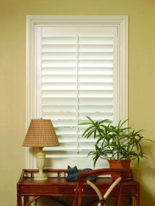 Interior Shutter Austin Texas Woodlore Composite Shutters Cream Colored  Horizontal Slats Vertical Windows Medium Shot Cat