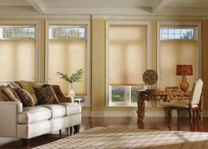 Window Blinds by Shades of Texas  Austin Texas residential installation creative blinds for french doors