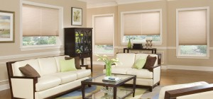 Window Shades by Shades of Texas  Austin Texas residential installation living room